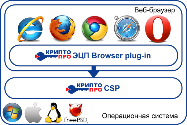 browser_plug-in_